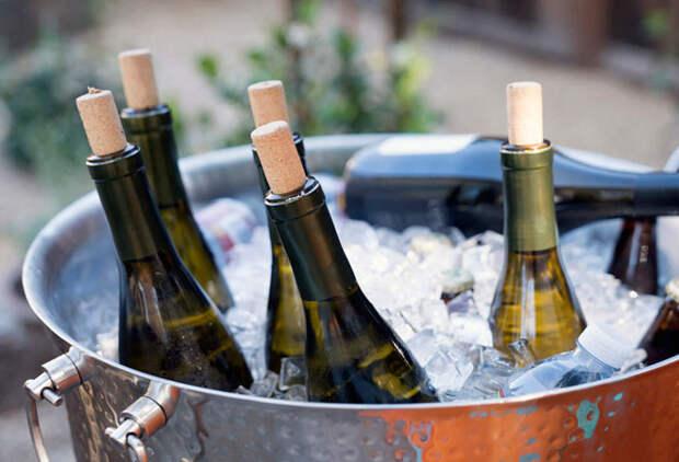 Охладить или нет: руководство по температуре подачи вина