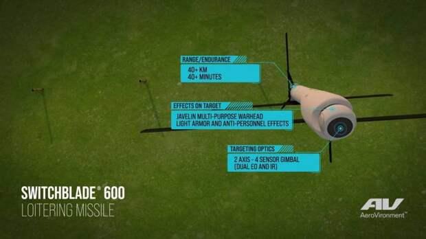 Барражирующий боеприпас Switchblade 600 (США)
