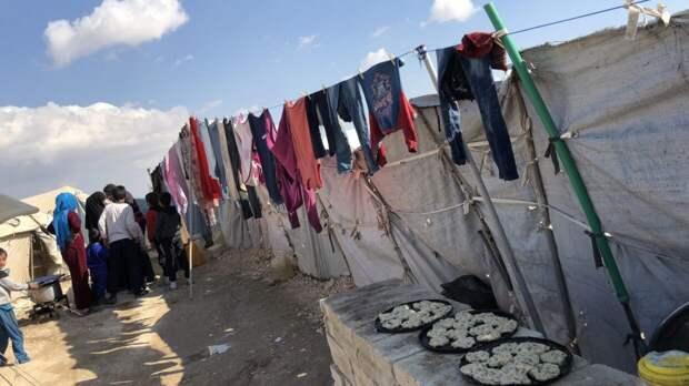 Зампостпреда РФ в ООН призвал к урегулированию кризиса с COVID-19 в сирийском Аль-Хол