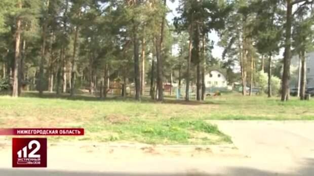 Глава СК взял на контроль дело убитой под Нижним Новгородом девочки