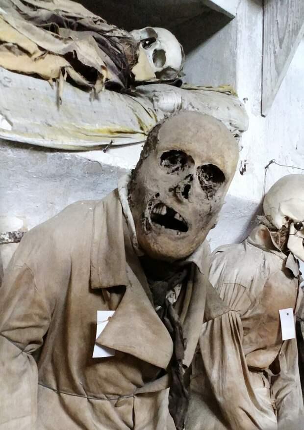 Мумия! Зачем и как на протяжении истории люди мумифицируют людей