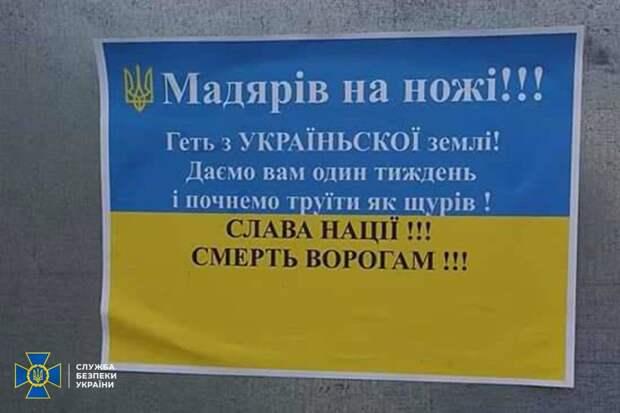 Опять «виновата» Россия – в Ужгороде задержали нациков, призывавших к преследованиям венгров