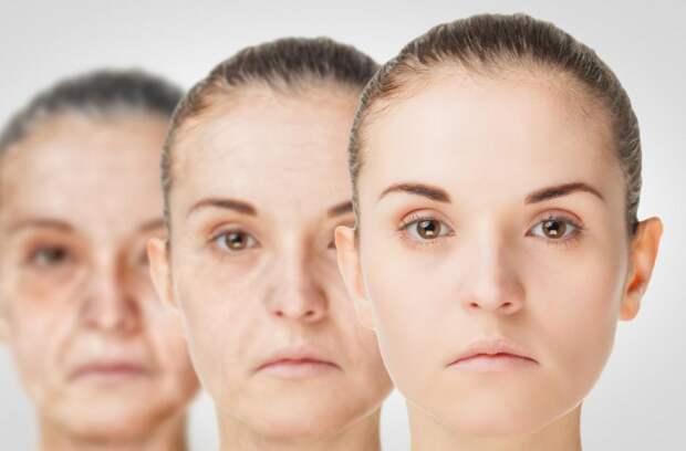 Ученые подсчитали, до какого возраста могут доживать люди