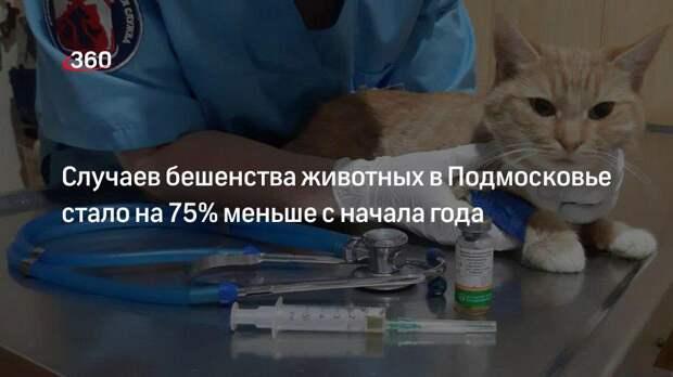 Случаев бешенства животных в Подмосковье стало на 75% меньше с начала года