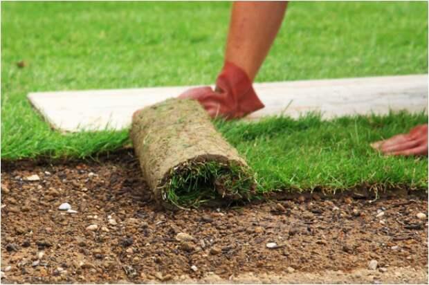 Укладка газона на геотекстиль. Для каких целей и почему это приносит вред газону?