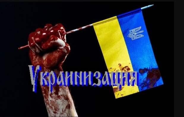 Крымский постпред в СПЧ: Женева, разберись с языковой сегрегацией на Украине!