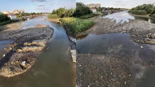 Спасти регион отэкологической катастрофы требуют жители Ростова