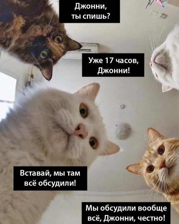 Новые успехи Байдена Перфокартного