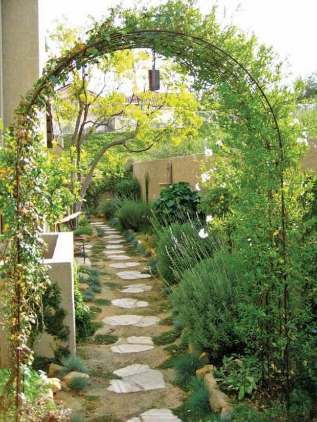Стильная садовая арка из металлических прутьев, которую вполне возможно соорудить своими руками.