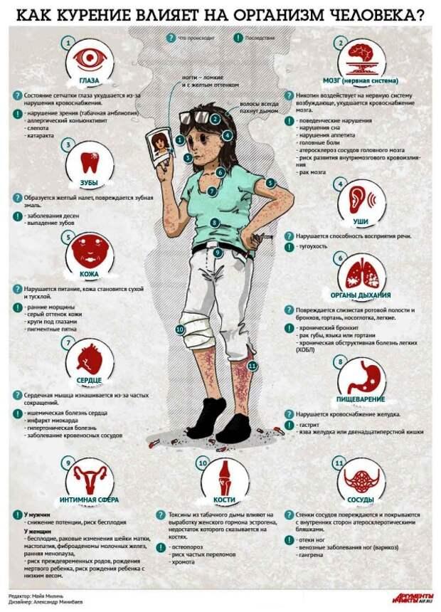Инфографика. Как курение влияет на организм