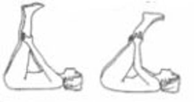 ПОХУДЕЙКА. Стретчинг для гибких и стройных