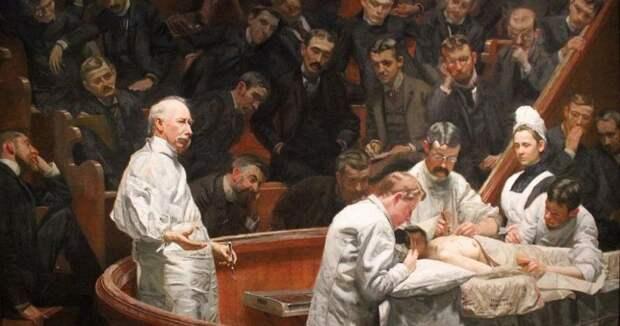 Анатомические театры: не совсем представление, но уж точно искусство