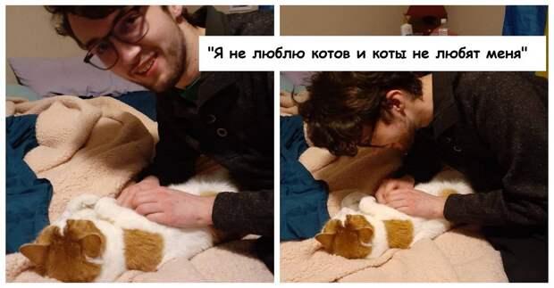 14 человек, которые не хотели заводить котов, но сдались перед кошачьим обаянием