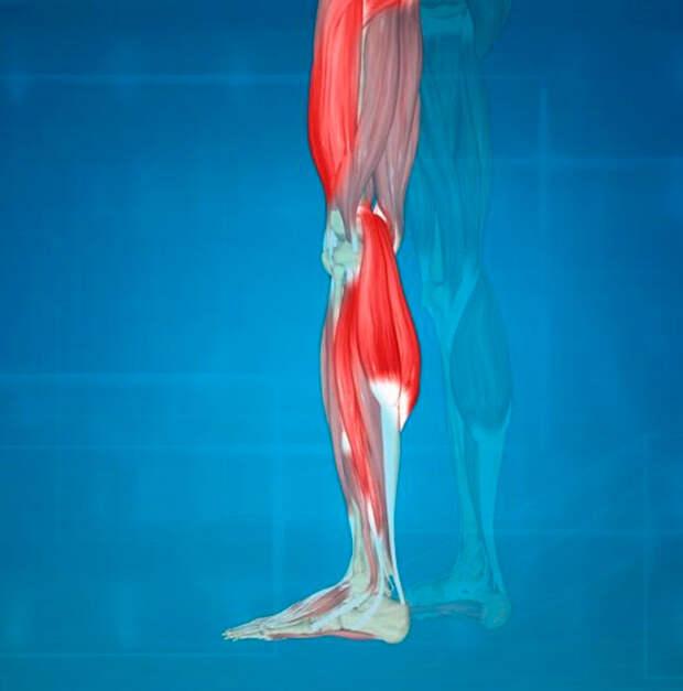 Как проверить здоровье ног