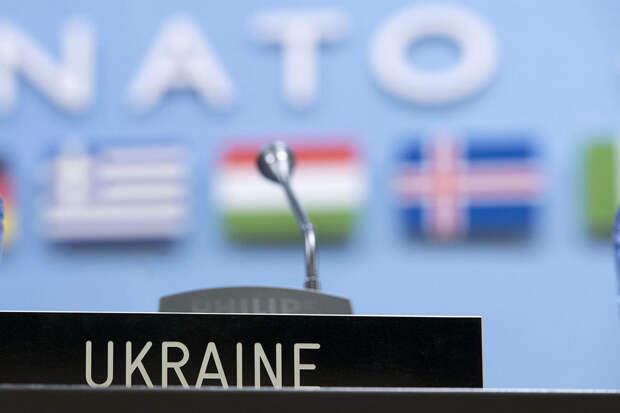 Читатели немецкой газеты назвали желание Украины вступить в НАТО «игрой с огнём»