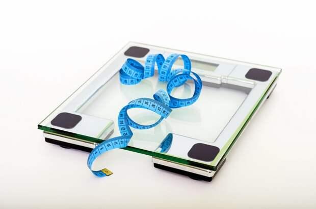 Есть и не толстеть: главные принципы палеодиеты