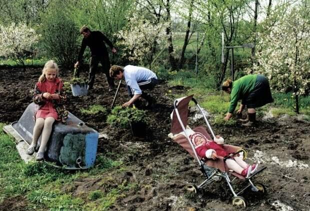 Размер участка был определен неслучайно, исходя из потребностей семьи в 4-6 человек / Фото: zzackon.ru