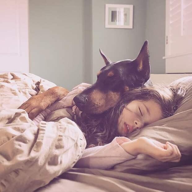Следует ли позволять собаке спать с вами?