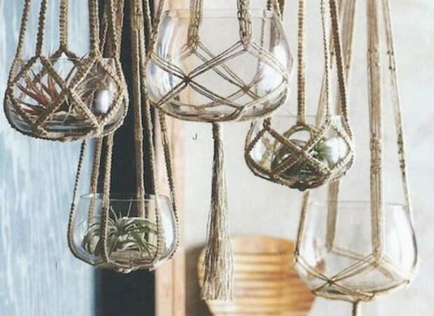 Небольшие растения в маленьких стеклянных емкостях, украденных замысловатым плетением из ниток.