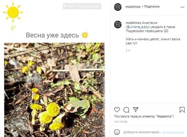 Фото дня: в парк «Подрезково» пришла весна