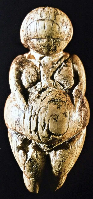 Разгадан секрет древнейших скульптур планеты: почему «Венеры палеолита» были тучными