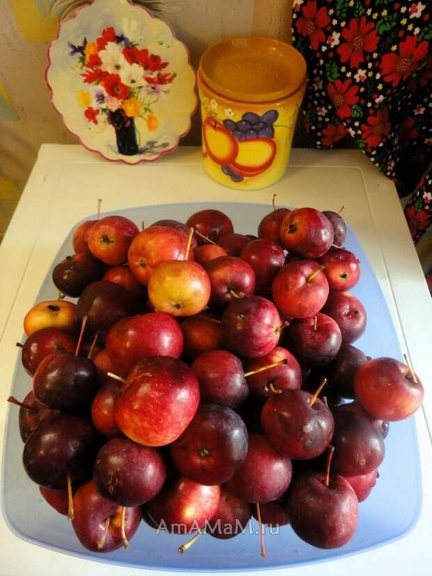 Заготовки на зиму райские яблочки