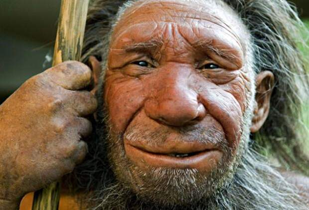 Для обезьяны нормально не думать, лениться, обманывать, изменять с чужой женой, воровать деньги