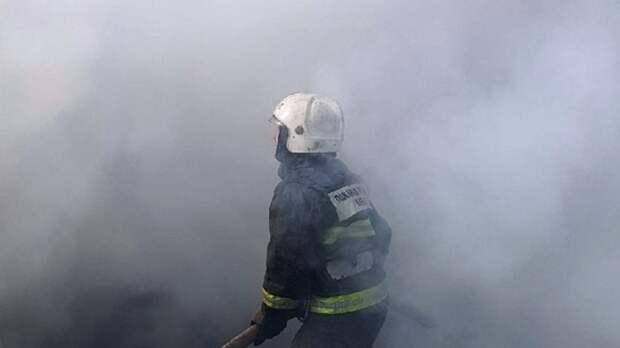 Спасатели пытаются потушить шесть полыхающих дачных домов в Свердловской области