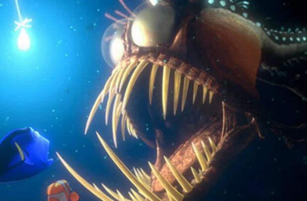 На пляж в США выбросило жуткую глубоководную рыбу. Похожая была в мультфильме «В поисках Немо»