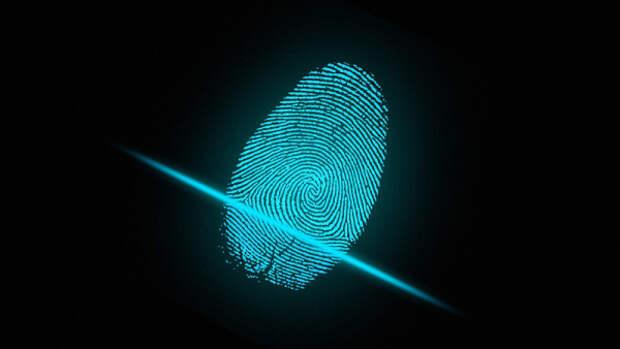 Названа роль отпечатков пальцев в современной криминологии