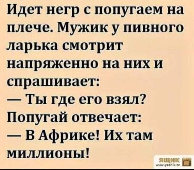 - Господин Рабинович, вы такой богатый и успешный. Давайте напишем книгу...