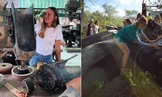 Доктор из джунглей спешит на помощь: девушка ветеринар из Австралии спасает слонов