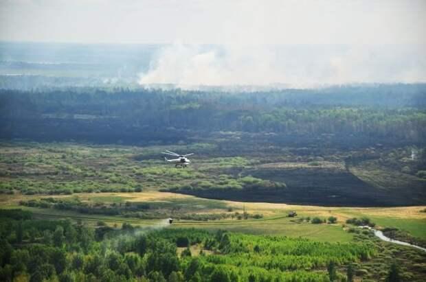В России за сутки ликвидировали 53 лесных пожара