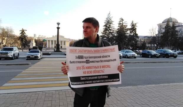 Росприроднадзор: Зооактивист «выдумал» повод для пикета вБелгороде