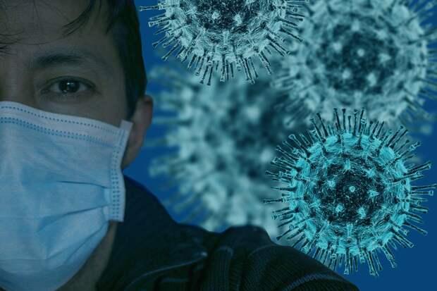 Наблюдаются из-за коронавируса в Севастополе 1 633 человека