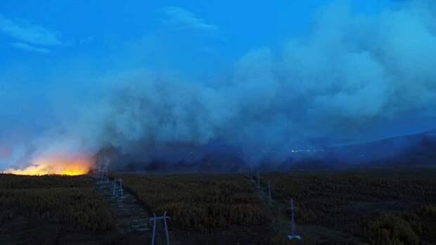 Семь лесных пожаров зафиксировали в Магаданской области