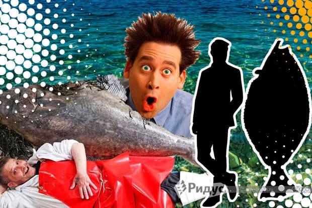 Шеф-повар купил на рынке рыбу мечты: палтуса весом почти 80 килограммов