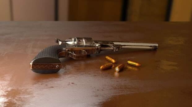 Глава Росгвардии озвучил предложения по ужесточению правил владения оружием