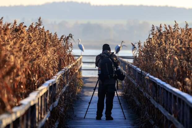 В Удмуртии пройдут соревнования по спортивной орнитологии