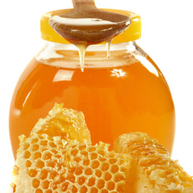 Как мёд влияет на человека мёд, человек