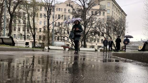Летний дождь и грозы ожидаются в Петербурге 15 мая