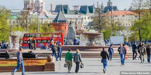 Сергунина рассказала о бесплатных консультациях для пользователей Russpass Фото: Юлия Иванко mos.ru