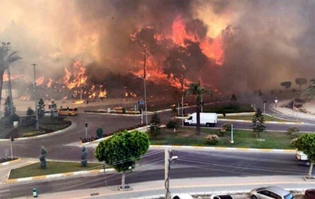 Лесные пожары добрались до турецкой Антальи (видео)