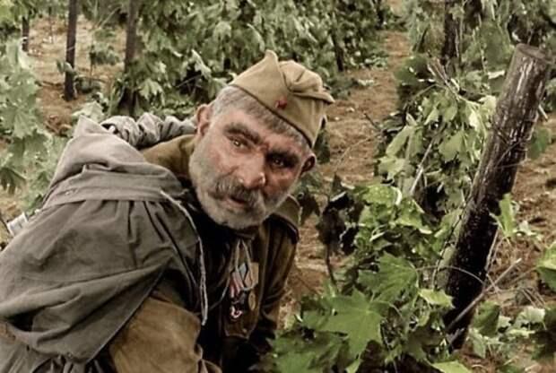 Серго Закариадзе в роли Георгия Махарашвили | Фото: yap-helper.ru