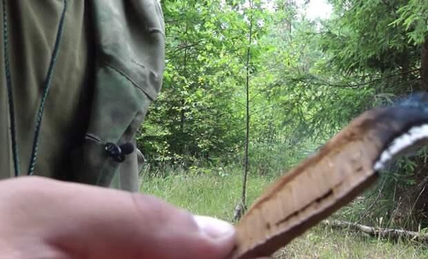 Два простых егерских способа, которые защитят вас от комаров