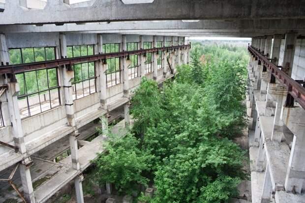 Заросшие руины промышленного здания в Воронежской области, Владимир Мулдер заброшенные здания, маяк, просторы, россия, церкви