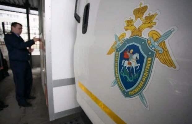 Жена депутата из Омской области снимала порно со школьницами и платила им по 3000 рублей
