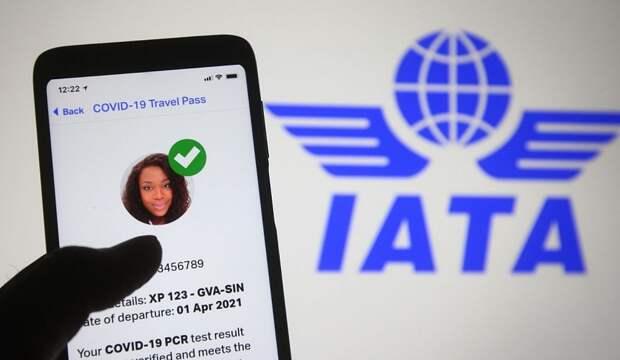 Политолог негативно оценил идею внедрения Travel Pass «Аэрофлотом»
