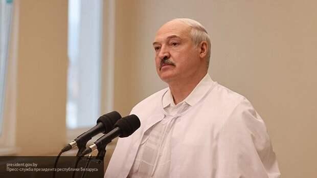 Основные пункты декрета Лукашенко «О защите суверенитета и конституционного строя»