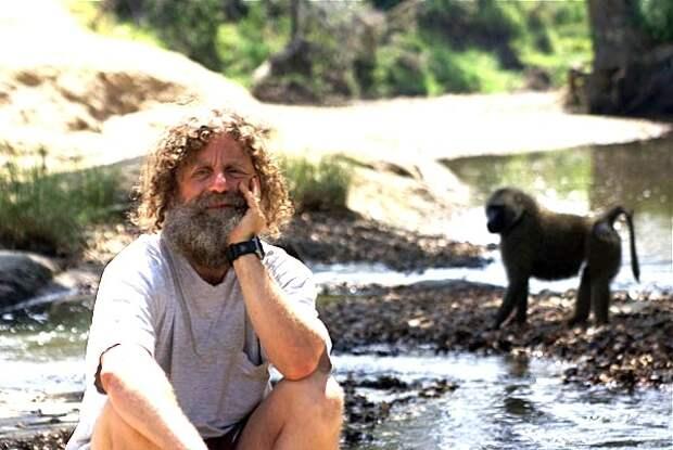 5 удивительных фактов об ученом Роберте Сапольски, который 25 лет прожил в стае обезьян